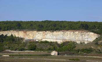 Chassagne-Montrachet Quarry @muzard