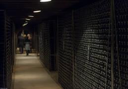 vinícolas Borgonha
