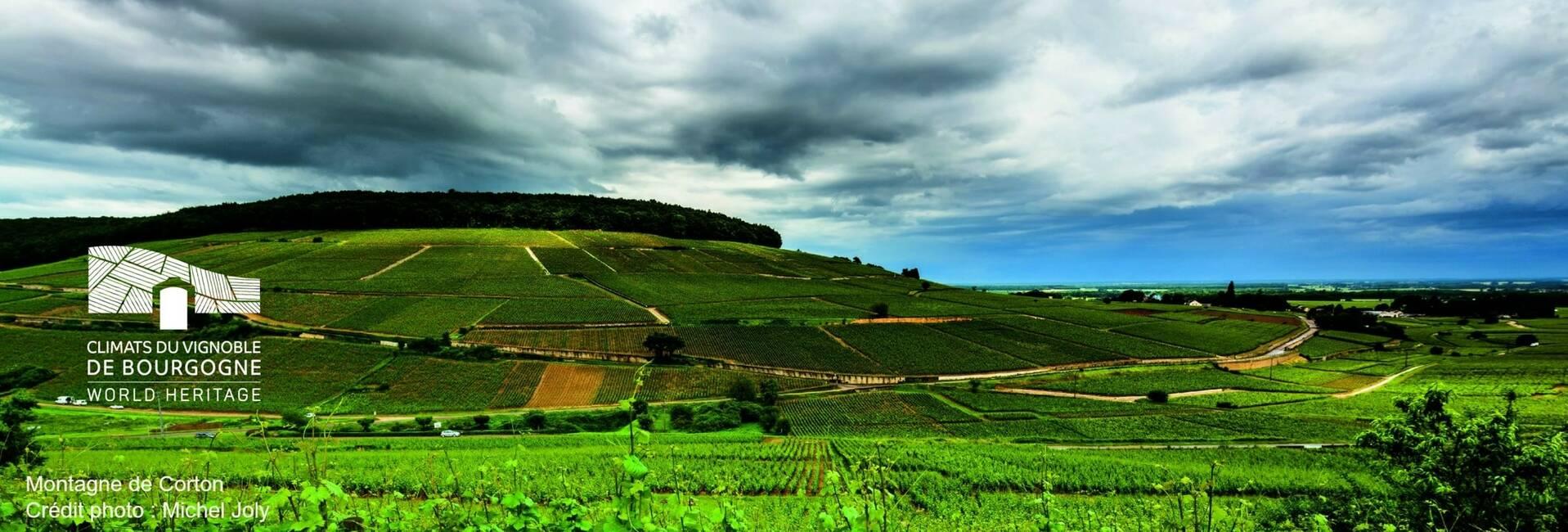 Montagne de Corton Bourgogne