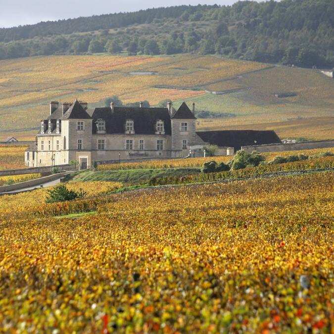 Castelo do Clos de Vougeot - Vistas das vinhas ©Jean-Louis Bernuy